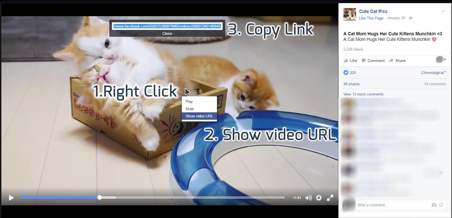 show video URL