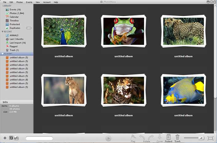 picasa replacement windows